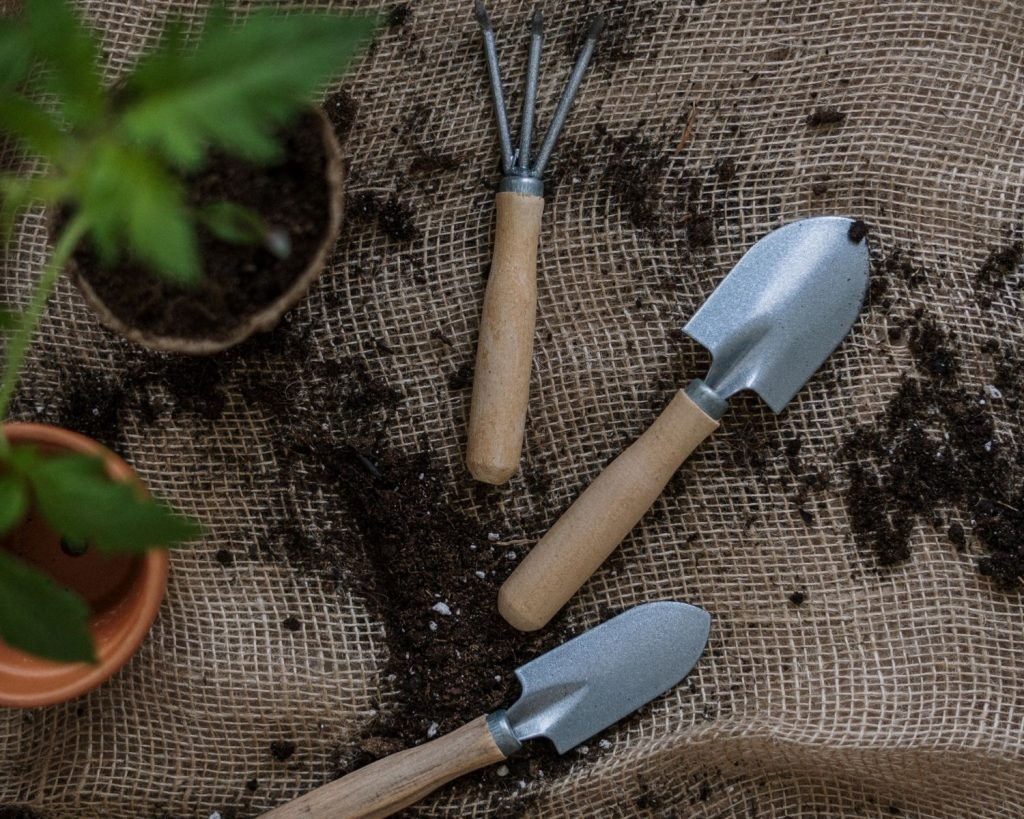Gardening tools & plants with soil